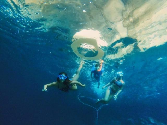 Diving and enjoying summer activities